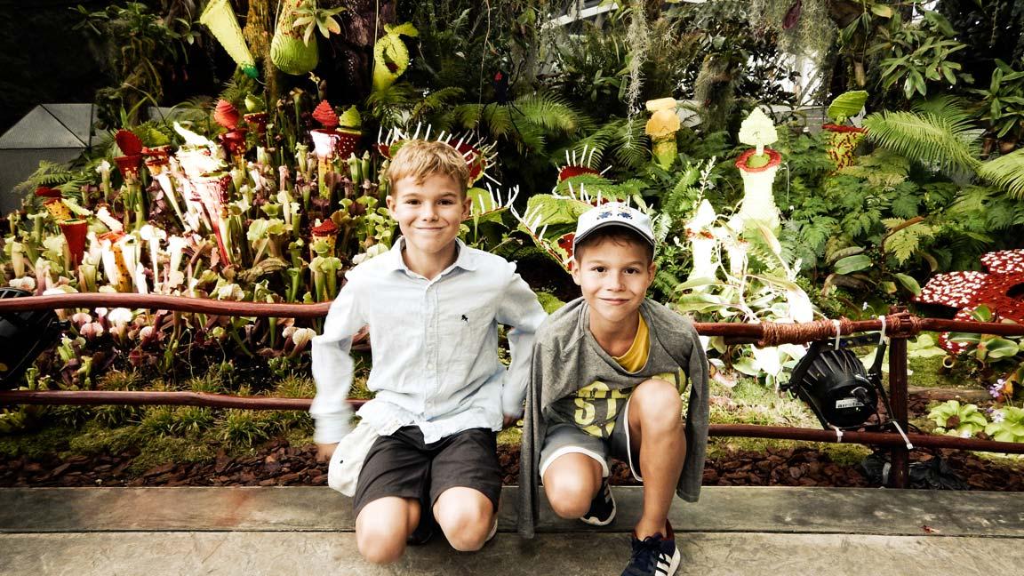jungs-vor-den-legopflanzen