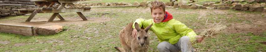 Tasmanien… da will ich auch leben!