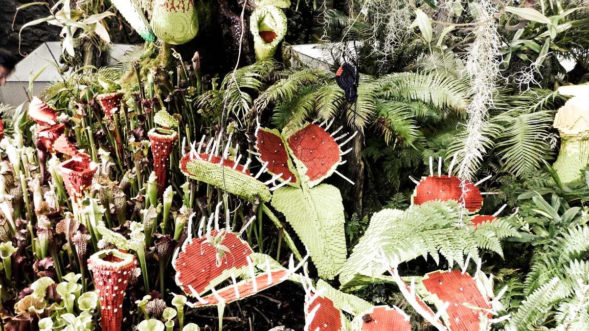 fleischfressende-legopflanzen